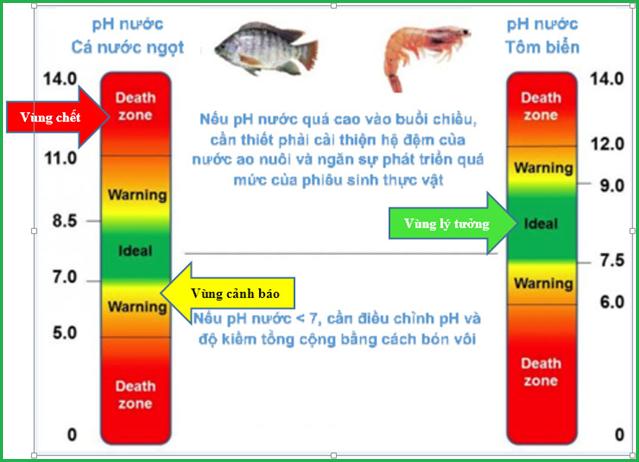 Ảnh hưởng của pH trong ao nuôi tôm cá