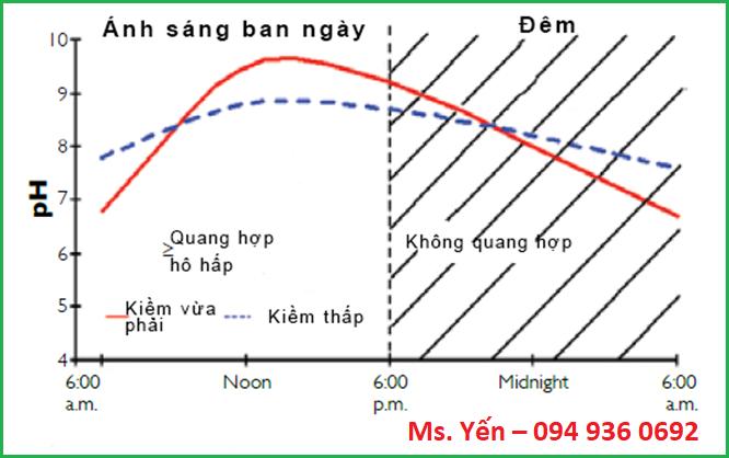 Sự thay đổi pH nước trong ngày