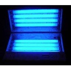 Ánh sáng đèn UV trong máng đèn